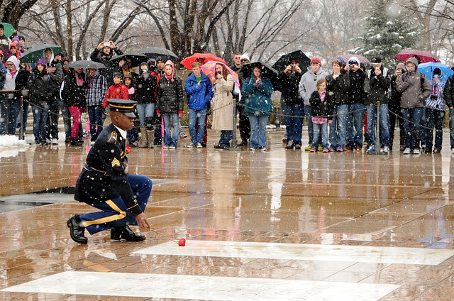 Free unknown soldier tomb laying rose government photo