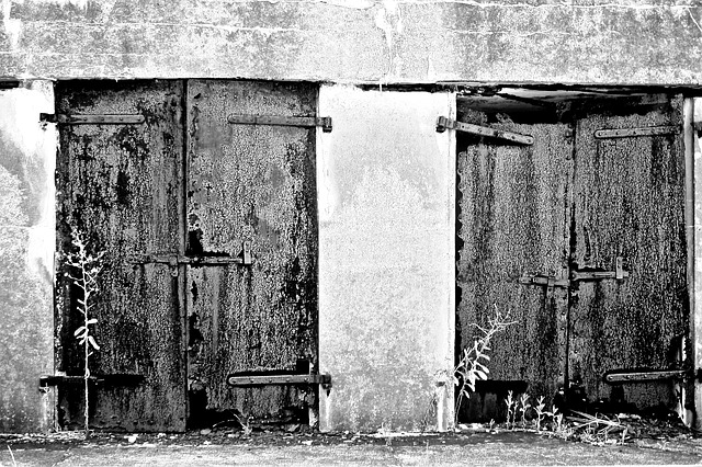 Free doors old entry building texture rust