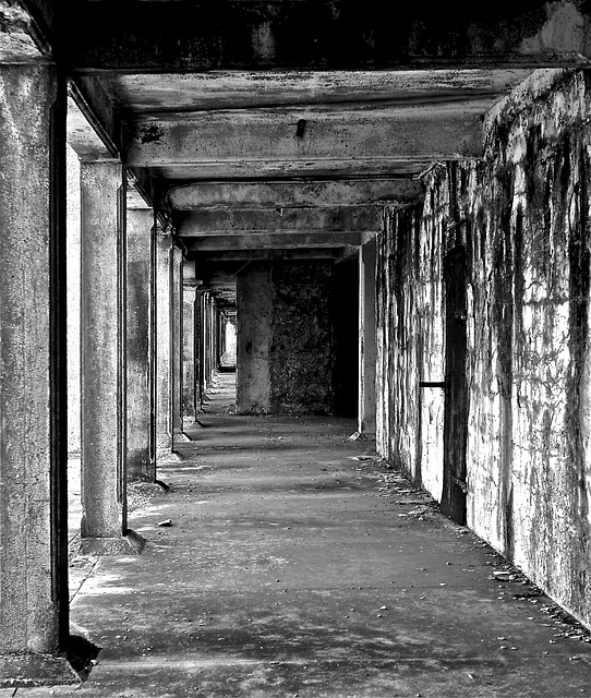 Free pier building old decay black and white