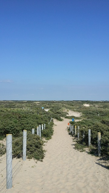 Free holland north sea zandvoort beach coast dunes sky