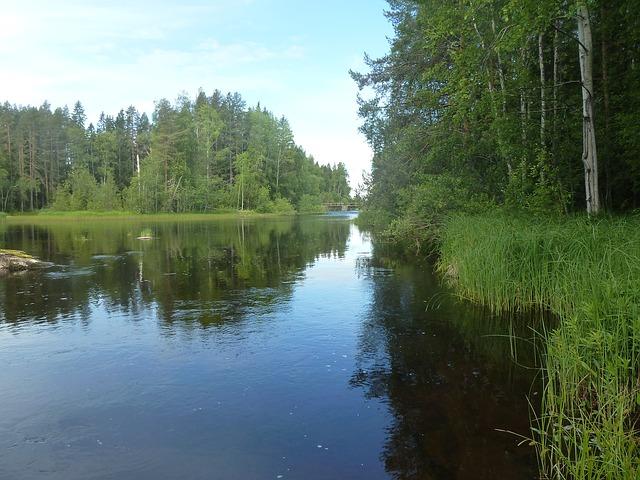 Free water river summer blue himmel bureå bure river