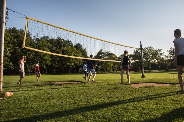 Free sports volleyball sportive sunny field game play