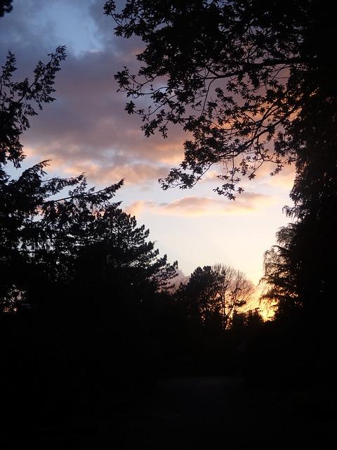 Free nature sky sunset landscape abendstimmung dusk