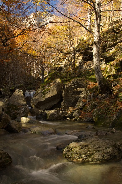 Free river mountain nature water landscape forest rock