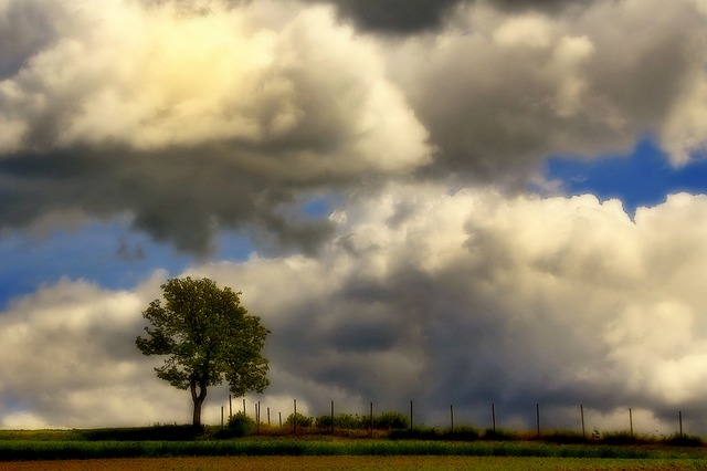 Free clouds nature landscape sky mood tree lonely