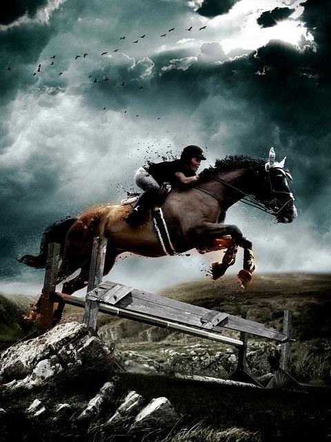 Free horse jump equestrian jumping equine art sport