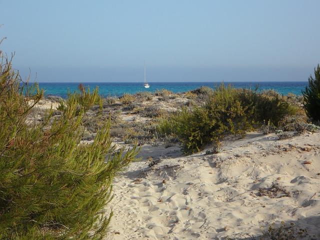 Free mallorca it trenc dune dune landscape horizon sea