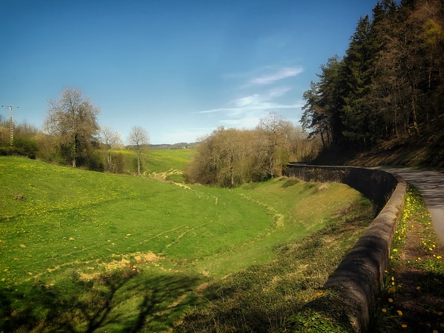 Free france landscape scenic hills road dandelions