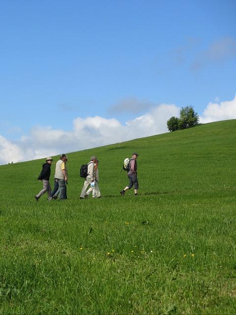 Free wanderer away meadow sky blue landscape nature