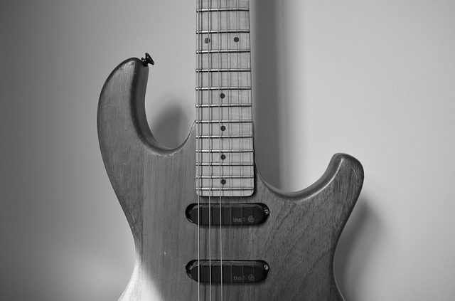 Free music instrument guitar old guitar string sound