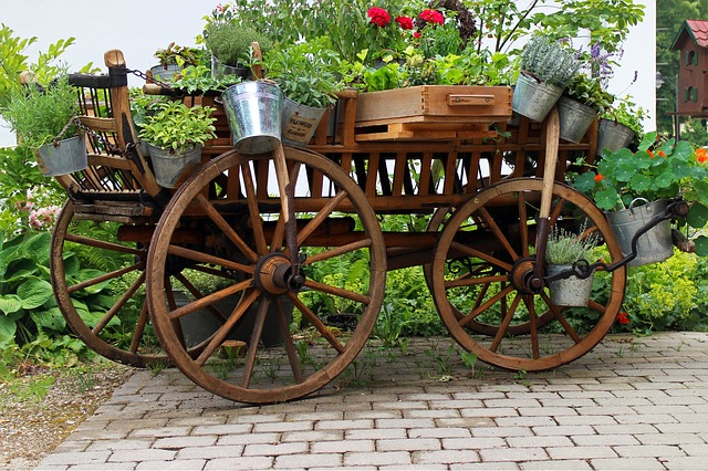 Free garden deco cart dare flowers plant bucket