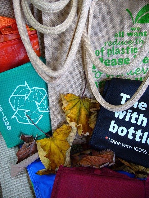 Free bags reuse recycling ecology trash