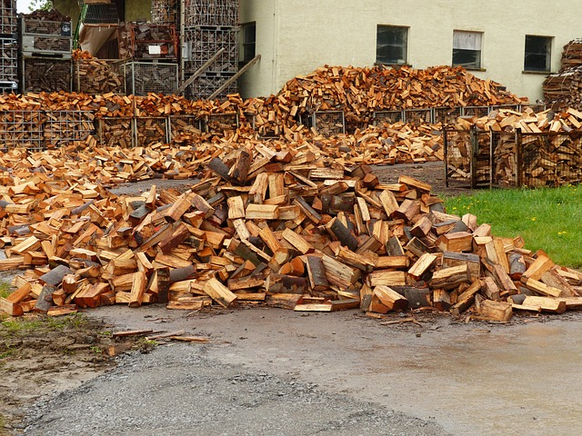 Free wood holzstapel firewood growing stock