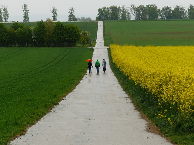 Free rainy weather slurry wet cold away road hike