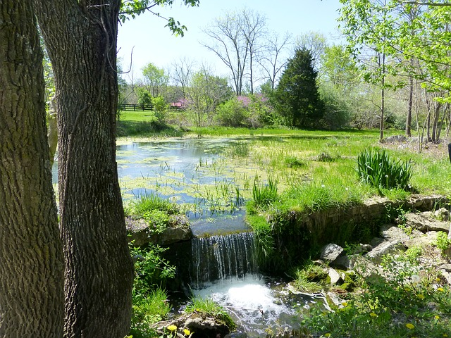 Free pond waterfall nature water natural outdoor