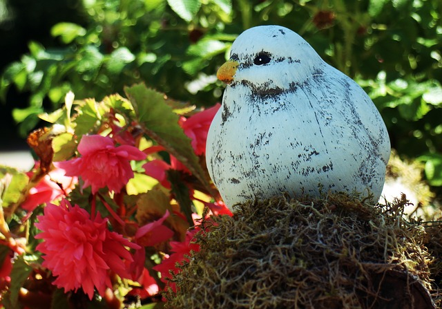 Free deco fig replica dove bird nature white