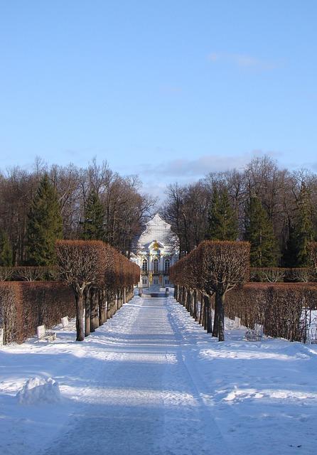 Free the palace ensemble tsarskoe selo russia alley