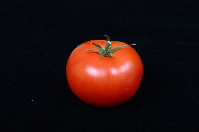 Free tomato vegetable red