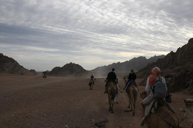 Free riding camel egypt adventure desert africa