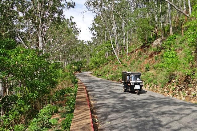 Free hill road auto-rickshaw nandi hills forest