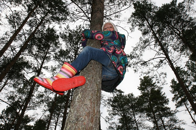 Free Photos: Child girl climbing action outdoor tree lifestyle | Sergey Nemo