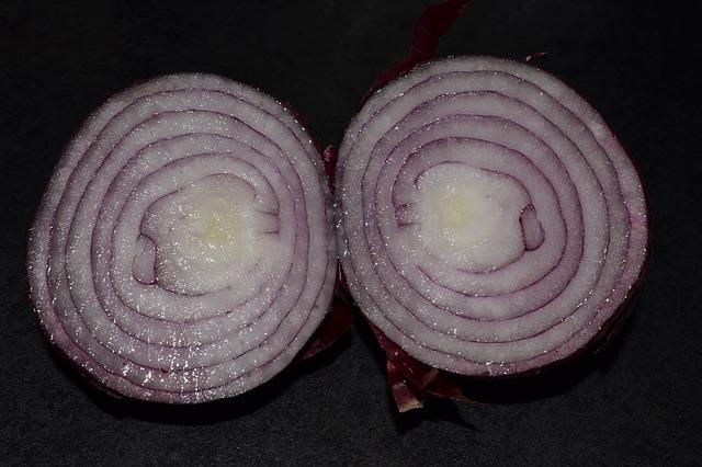 Free red onion food vegetable onion eating vegetarian