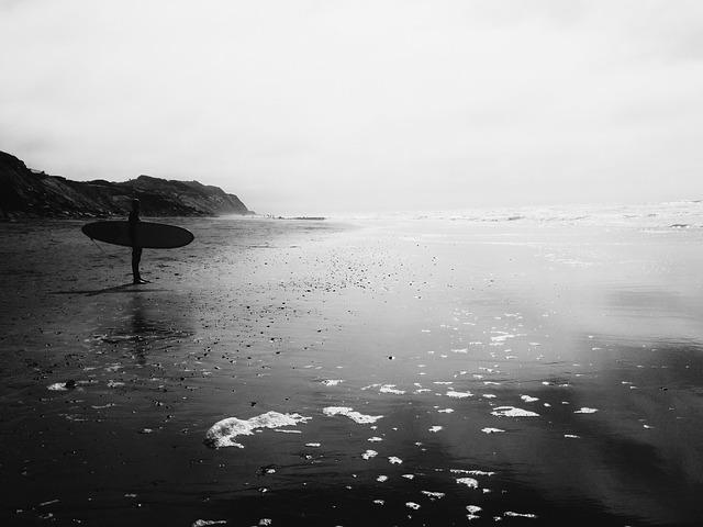 Free surfer beach grayscale ocean sea surf sport