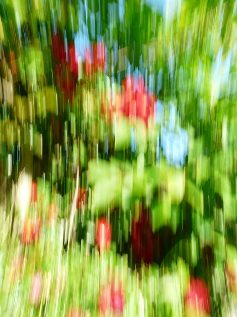 Free photo art filter movement blurry out of focus