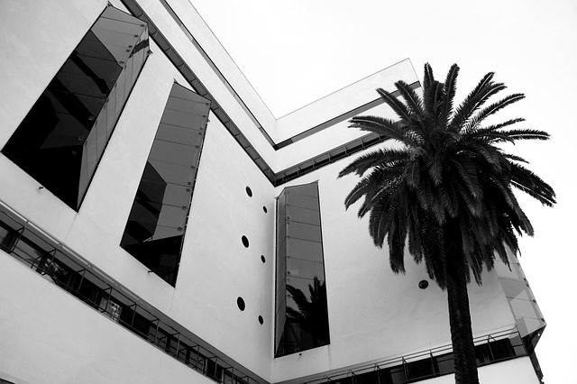 Free hotel building palm palm trees architecture home