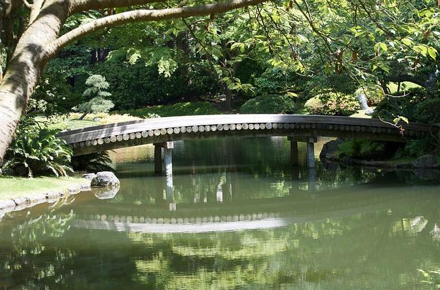 Free bridge wood bridge peaceful spot calmness