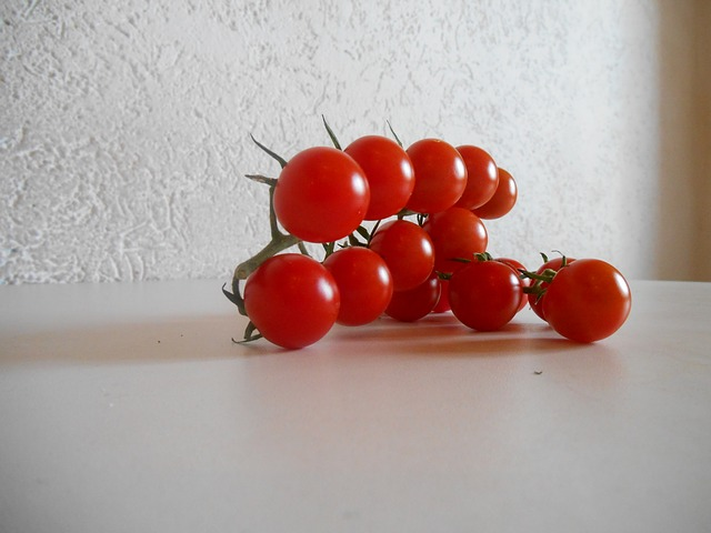 Free tomatoes cherry tomatoes mini tomatoes red white