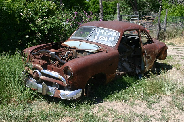 Free ford abandoned car automobile rusted junk weeds