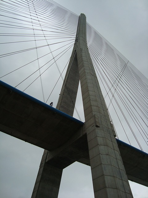 Free bridge pillar suspension bridge