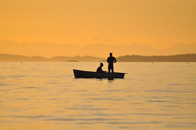 Free               fishing sunset british columbia catching fish