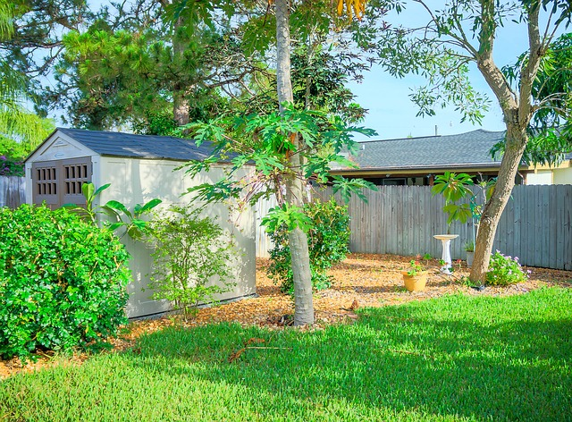 Free fence shed wooden shed garden