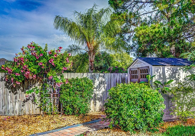 Free hdr fence shed flowers landscape countryside