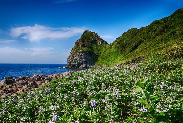 Free coast rock itoshima irie seaside green space sky