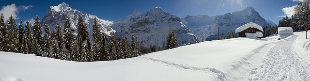 Free panorama winter grindelwald switzerland wintry