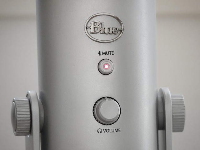 Free microphone mute audio micro sound sound recording