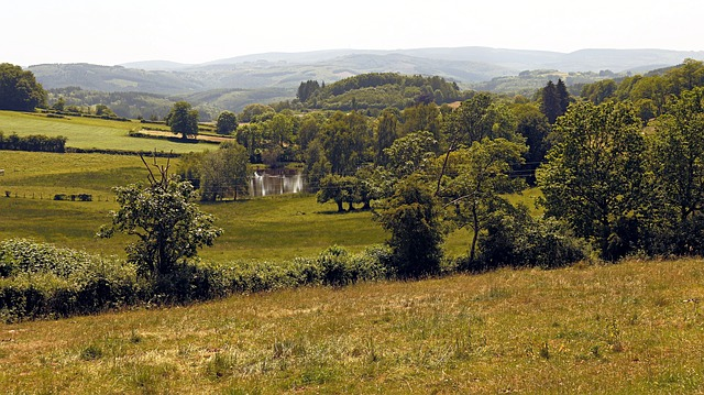 Free landscape trees campaign nature green morvan