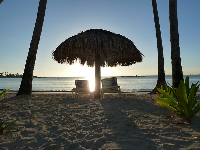 Free beach sunlight resort summer lights ocean sand