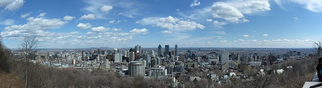 Free city town building montreal mont royal panorama