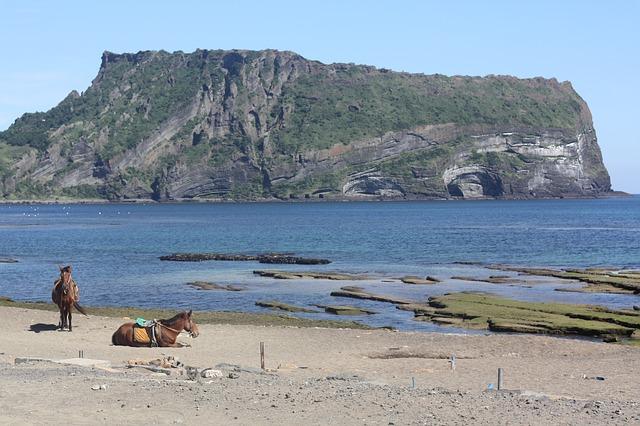 Free jeju island landscape sea
