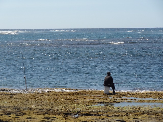 Free fisherman man waiting sitting sea nature ocean