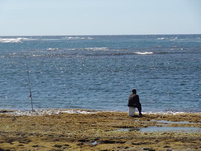 Free fisherman man waiting sitting sea nature ocean