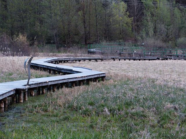 Free biotope web moor ampolasee reserve trentino