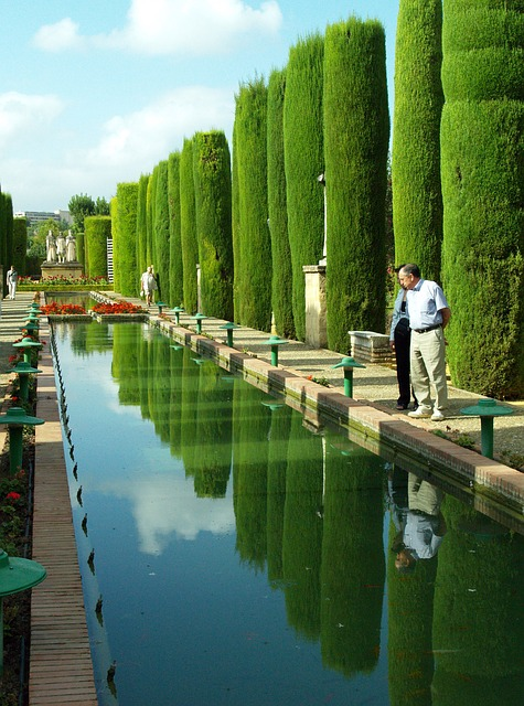 Free alhambra pond water vegetation trees gardens