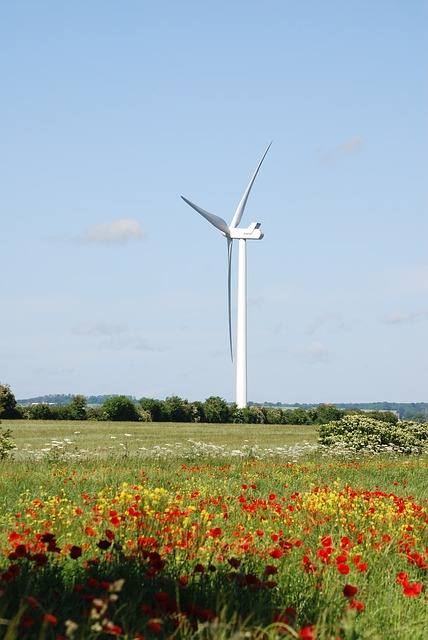 Free wind turbines farmland environmentally friendly