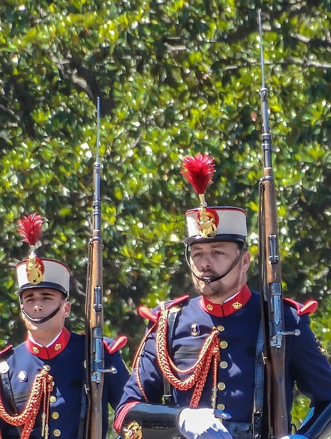Free parade royal guard military in formation uniform