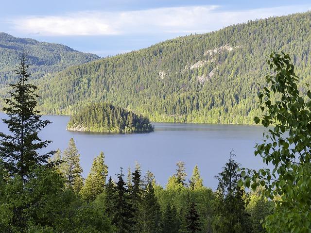 Free island canim lake british columbia canada scenery
